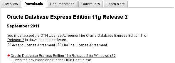 oracle 10g xe